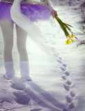 Spring is coming. Through the snow Royalty Free Stock Images