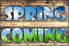 Spring coming Royalty Free Stock Image