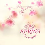 Spring is coming - cover. Royalty Free Stock Images