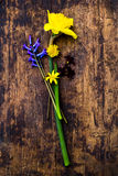 Spring is coming... Fresh flowers. Spring is coming. Fresh flowers. Village life Royalty Free Stock Image