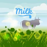 Cow, green field, flowers, sky. Camomile, grass, dandelion. Background. Vector, isolate, illustrarion, baner, flyer. Spring is coming. Green field, flowers, sky Stock Photos
