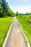 Spring is Coming on the Gravel Path royalty free stock images