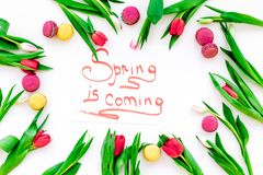 Spring is coming hand lettering surrounded by red tulips and sweets macarons on white background top view. Spring is coming hand lettering surrounded by red Stock Images
