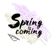Spring is coming  lettering illustration. Hand drawn phrase. Handwritten modern brush calligraphy for invitation and greetin Royalty Free Stock Photos