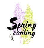 Spring is coming  lettering illustration. Hand drawn phrase. Handwritten modern brush calligraphy for invitation and greetin Stock Photo