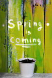 Spring is coming Stock Photos