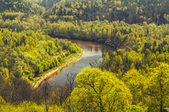 Spring is coming! River Valley woke up from sleep. The young green leaves covered with oaks, alders, elms and birches. Young foliage is similar to the gentle Royalty Free Stock Photos