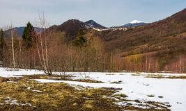 Spring is coming to snowy mountain Stock Photos