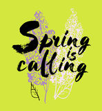 Spring is coming vector lettering illustration. Hand drawn phrase. Handwritten modern brush calligraphy for invitation Royalty Free Stock Photo