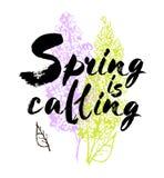 Spring is coming vector lettering illustration. Hand drawn phrase. Handwritten modern brush calligraphy for invitation Stock Image