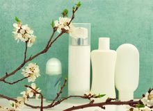 Spring composition with body care products Stock Photography