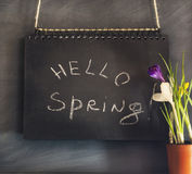Spring composition with flowers and chalk board Stock Image