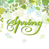 Spring composition. Leaves,branches.Seasonal Royalty Free Stock Photo