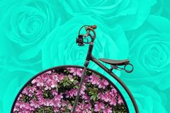 Spring concept: antique bicycle with flowers on hoops Stock Images