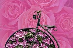 Spring concept: antique bicycle with flowers on hoops Stock Photography