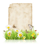 Spring concept with blank paper Royalty Free Stock Image