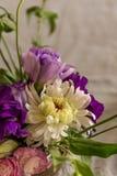 Spring concept. Flower arranagement in vintage vase royalty free stock photography