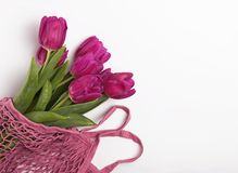 Spring concept with fresh purple tulips in a net bag on the white background. With copy space stock photos