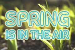 Spring is in the air. Background with large blue letters. royalty free stock photo