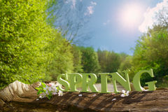 Spring Concept Stock Image