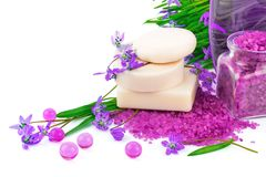 Spring concept with soap and snowdrops. Spring concept with white soap, violet sea salt and purple snowdrops Royalty Free Stock Photography