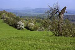 Spring in the country stock photography