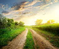 Spring and country road Stock Photography
