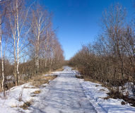 Spring country road with melting snow Stock Photography