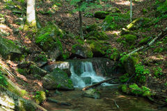 Spring in countryside. Scenic view of spring from rock forming pool in countryside Stock Images