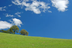 Spring countryside Royalty Free Stock Photography