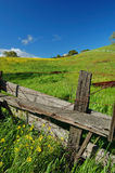 Spring countryside Stock Image