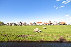 Spring in the countryside from Netherlands Stock Images