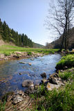 Spring countryside with river. Spring countryside - river, forest and blue sky royalty free stock photography