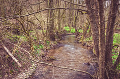 Spring countryside and river Royalty Free Stock Photography