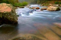Spring creek Stock Image