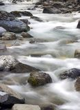 Spring Creek 2. Water running trhough a stream Royalty Free Stock Photos