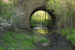 Spring Creek Arch Stock Image
