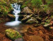 Spring creek Royalty Free Stock Image