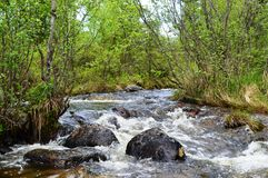 Spring creek. The image of stormy creek Stock Images