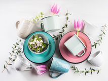 Spring crockery concept with tulips flowers pastel color. Spring tableware crockery concept with tulips flowers pastel color white background. Textured ceramic Royalty Free Stock Images