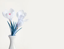 Spring crocus flower bouquet Royalty Free Stock Images