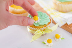 Spring cupcakes decoration and ingredients Royalty Free Stock Photography