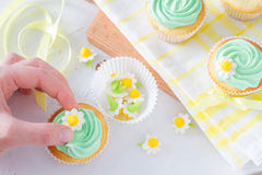 Spring cupcakes decoration and ingredients Stock Image