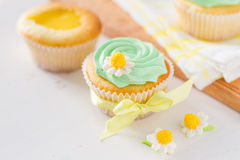 Spring cupcakes decoration and ingredients Stock Photography