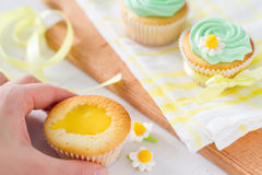 Spring cupcakes decoration and ingredients Royalty Free Stock Photo