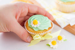 Spring cupcakes decoration and ingredients Royalty Free Stock Image