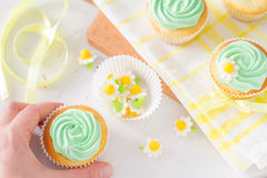 Spring cupcakes decoration and ingredients Royalty Free Stock Images