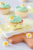 Spring cupcakes with flowers Stock Image