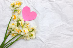 Spring daffodils bouqet on the white craft paper background with Stock Photo