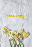 Spring daffodils bouquet on the white craft paper background Royalty Free Stock Photo